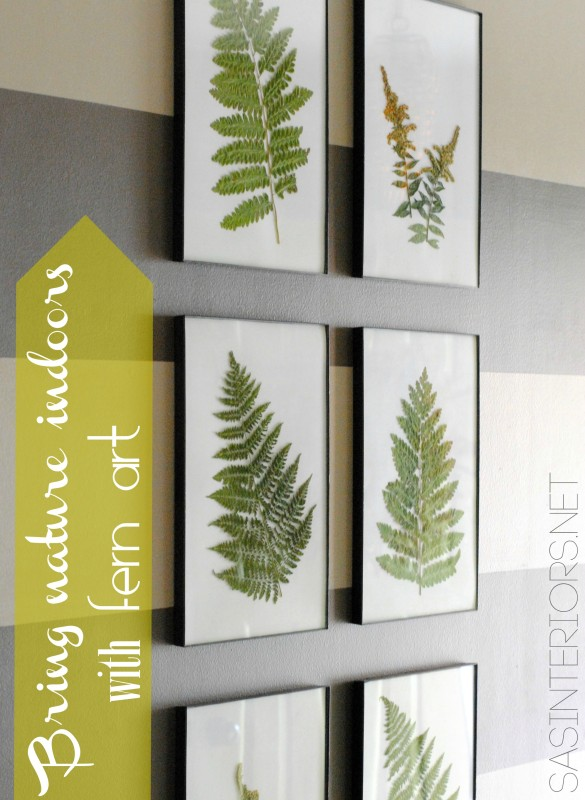 Bring the Outdoors in by using ferns and creating art by @Jenna_Burger, WWW.JENNABURGER.COM