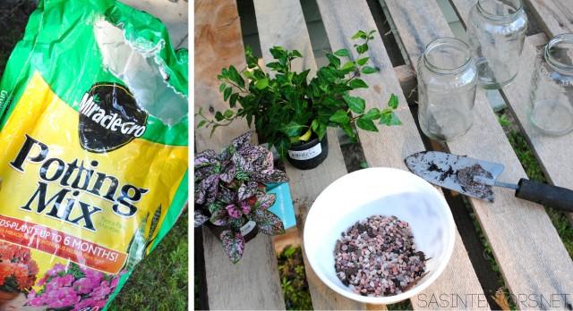 #DIY: Mason Jar Terrarium tutorial by @Jenna_Burger, www.jennaburger.com