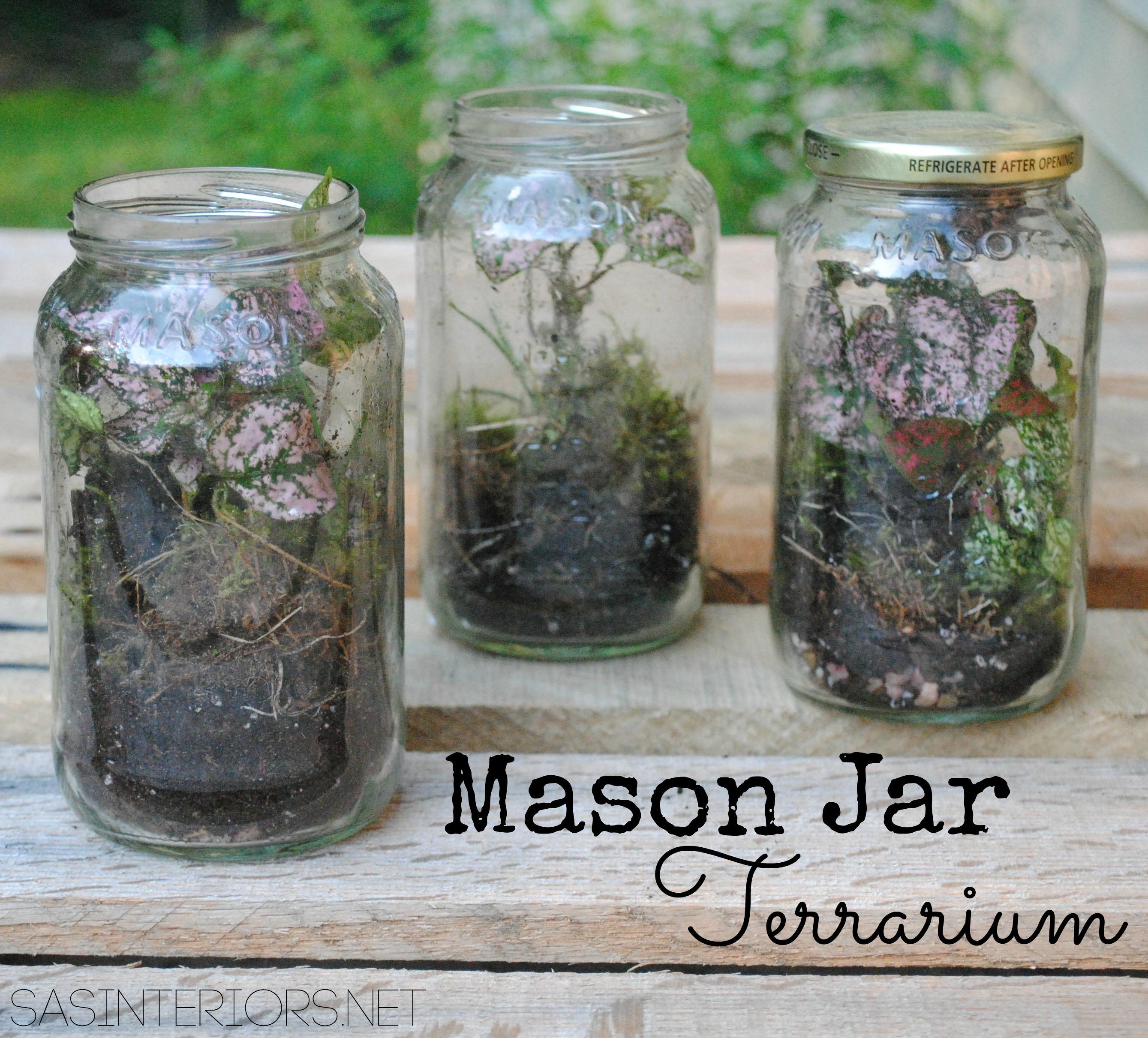 Diy Mason Jar Terrarium Jenna Burger Design Llc