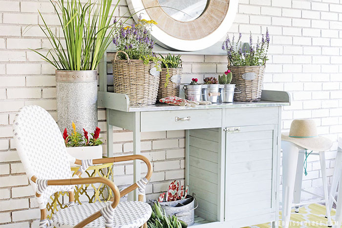 garden table with pretty plants
