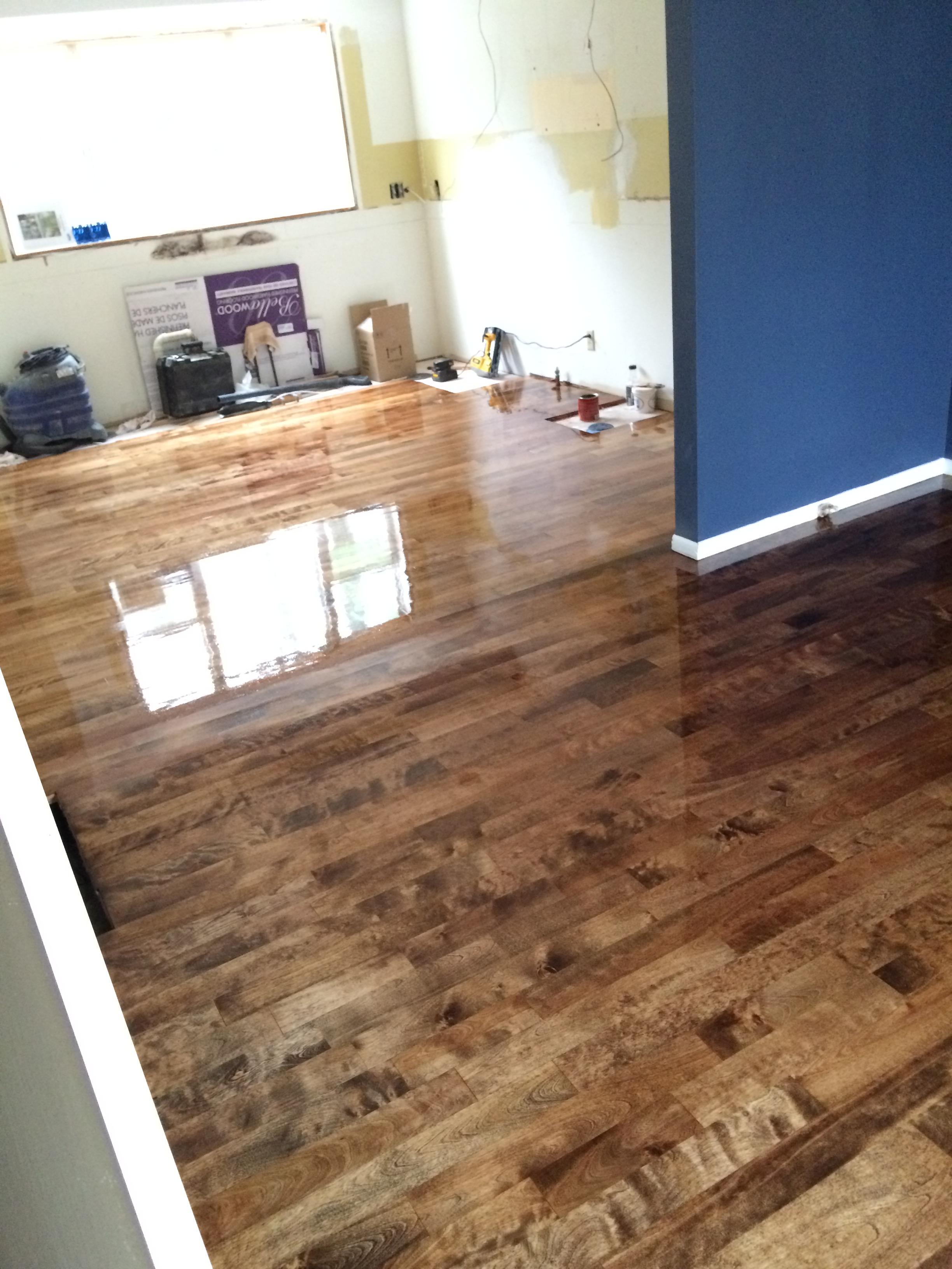 Kitchen Progress Staining Hardwood Floors Jenna Burger